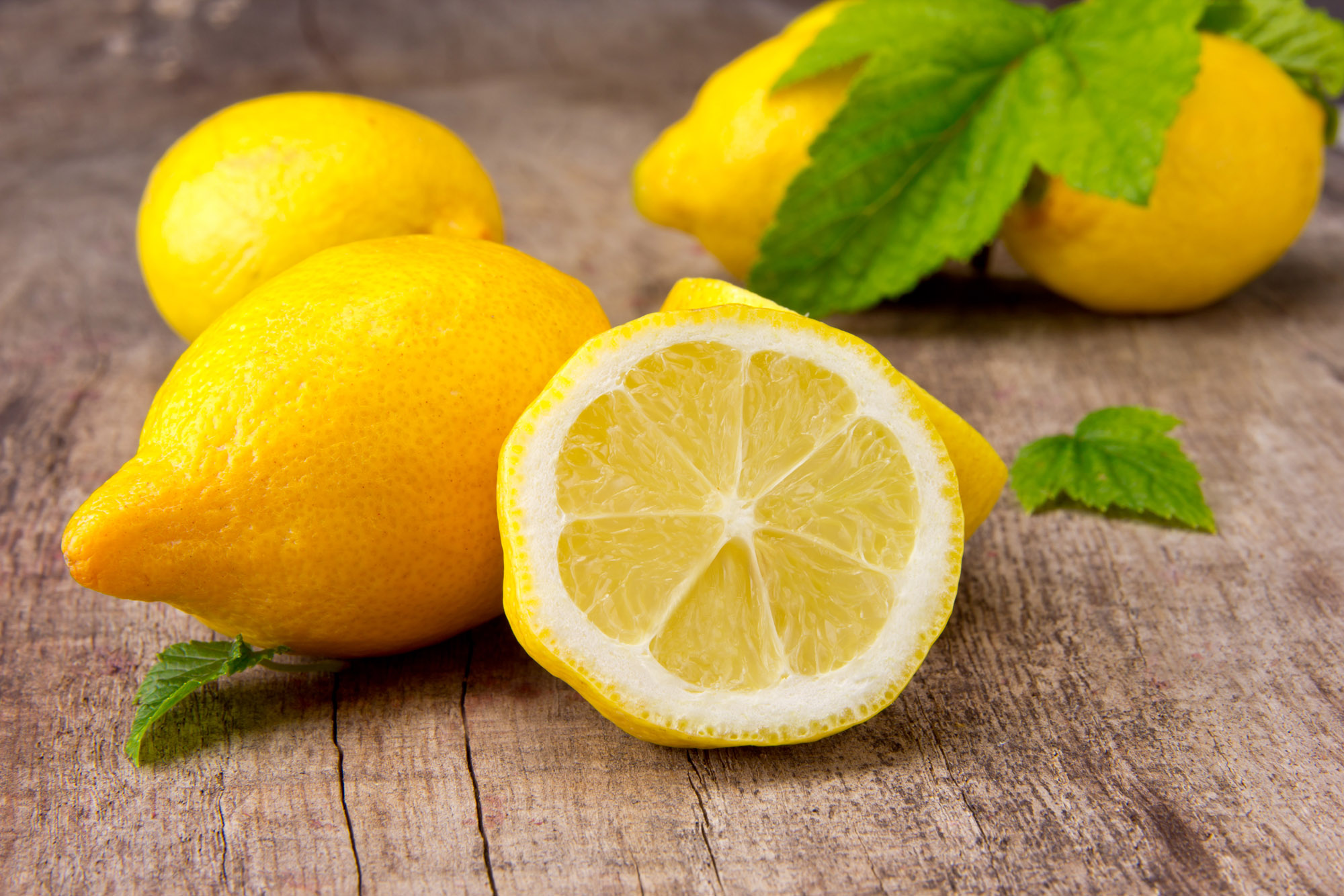 lemon-benefits-dip-feed-4